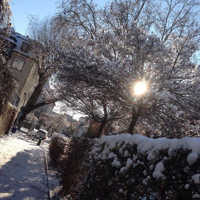 greetings from ski resort #winter