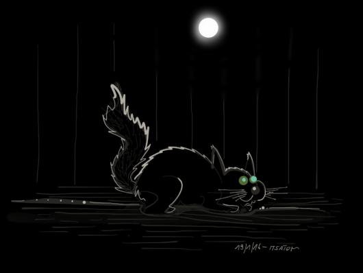 Nachts, Katzen und so