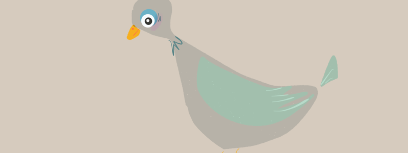 Grauer Vogel auf hellgrauem Grund