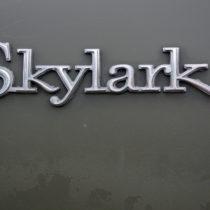 """""""SkyLark"""" - Chrom auf Grau"""