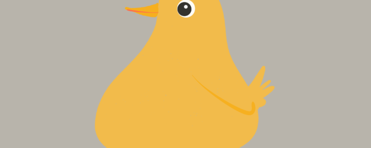 Gelbes Küken vor grauem Grund