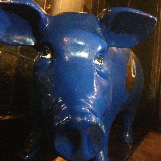 Blaues Schwein