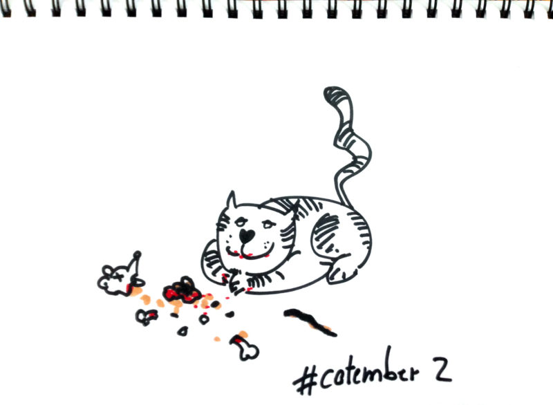 catember-2