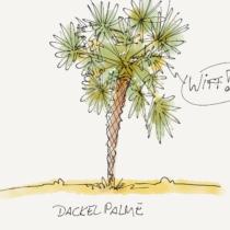 Comicillustration einer Palme mit Augenpaaren drin, dazu eine Sprechblase mit 'Wiff!'