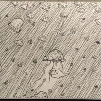 Eine Armada von Quallen. Im Vordergrund ein Fisch, der eine Qualle wie einen Regenschirm über sich hält, als Schutz vor den Tentakeln